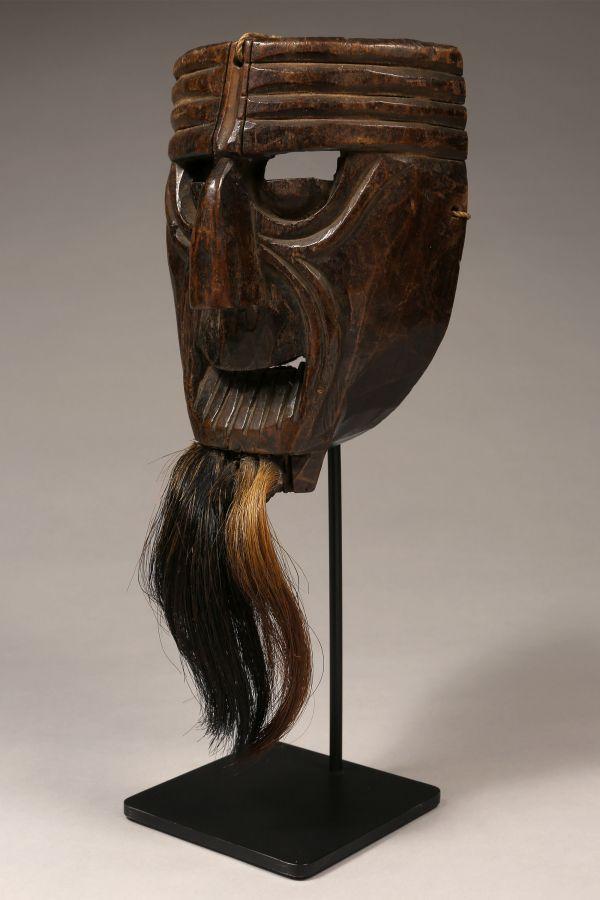 <?php echo Village Tarantula Mask?>