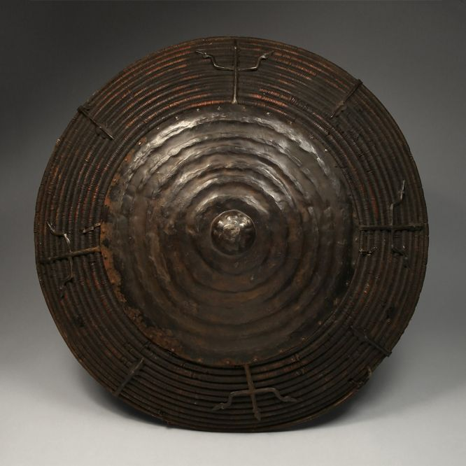 Domed Cane Shield